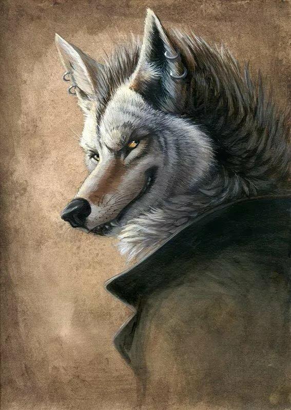 картинки волки фэнтези в шляпе шторы