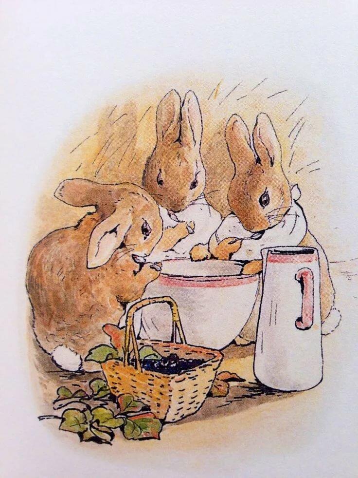 картинки беатрис поттер кролик фотографии еще