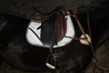 седло для лошади выездковое со стременами