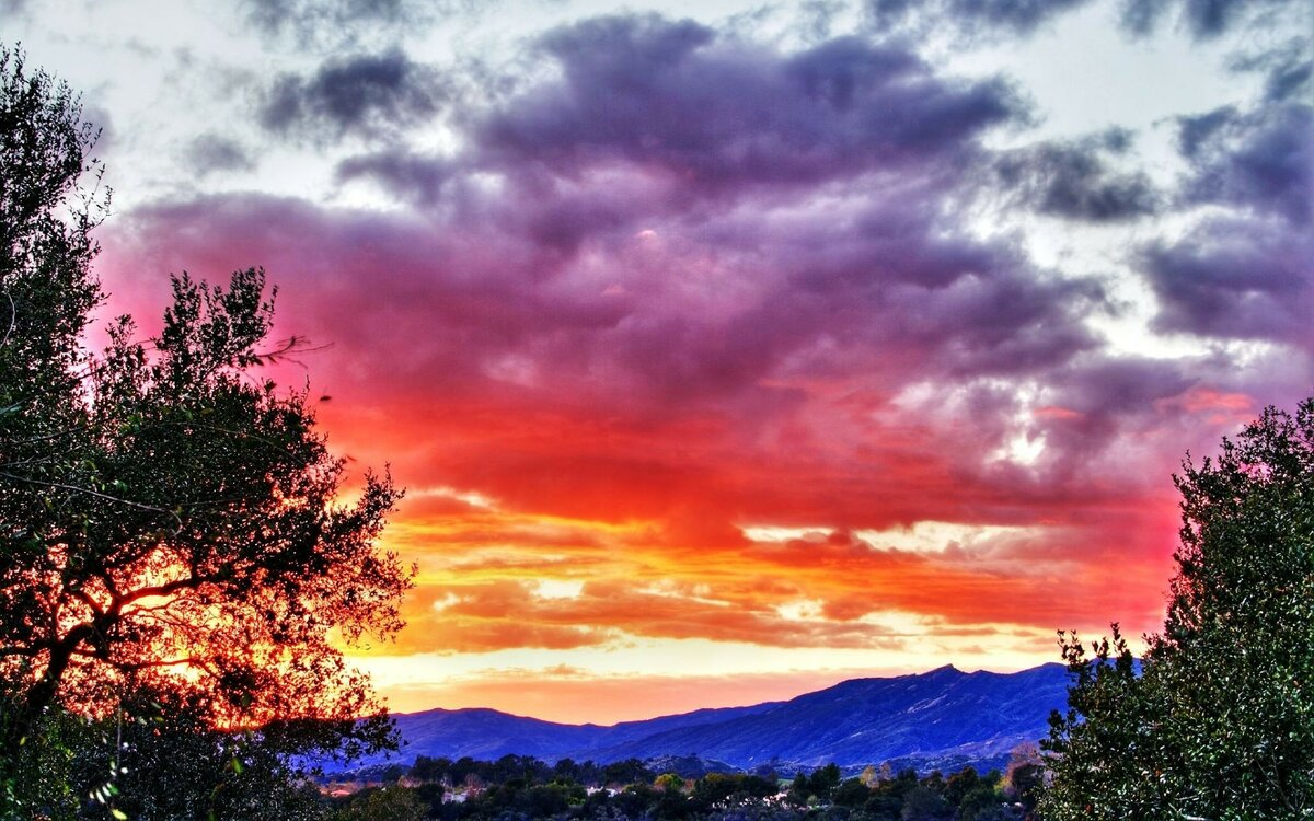 организациях картинки показывающие красоту неба цвета
