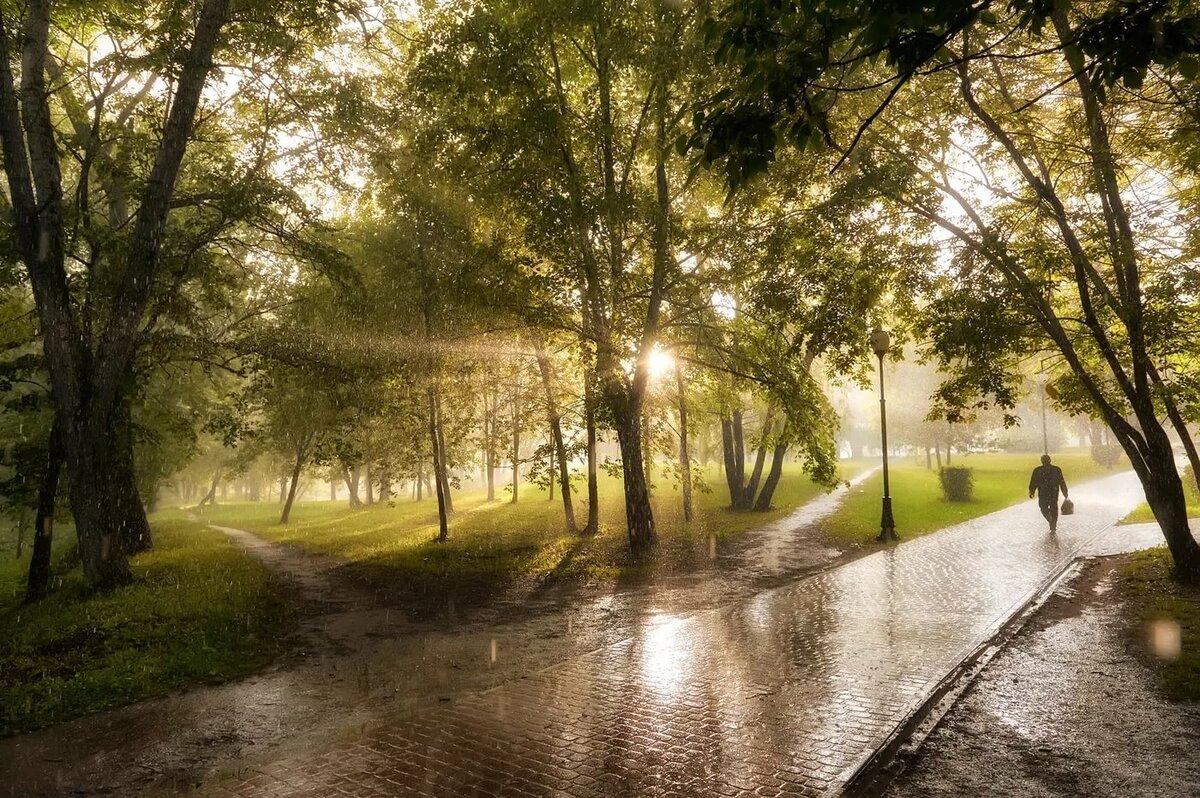 картинка дождя в парке антонов обсуждает экспертами