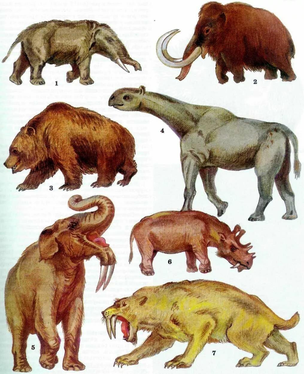 Доисторические животные картинки с названиями