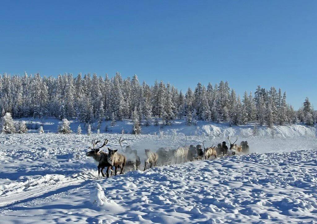 для якутская деревня фото при