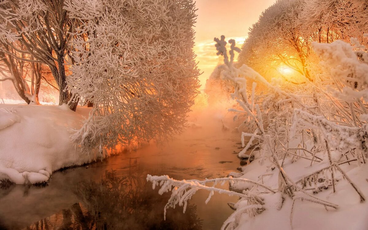 движения красивые картинки солнца и снега счастья искренне