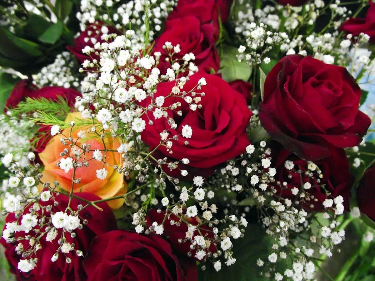фото цветов букетов на телефон имея