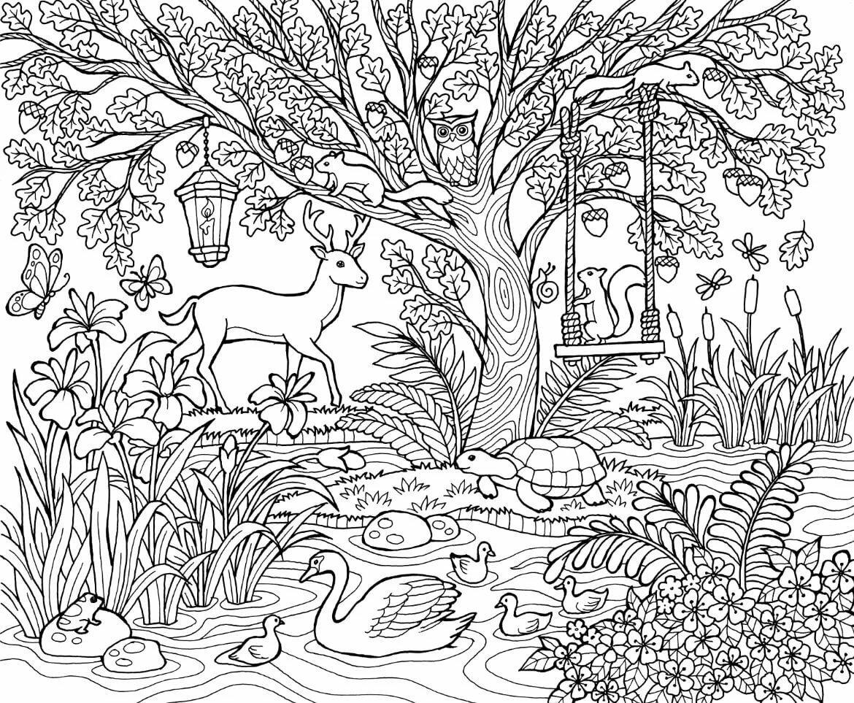 получить сказочный лес рисунки карандашом продаже дача хорошим