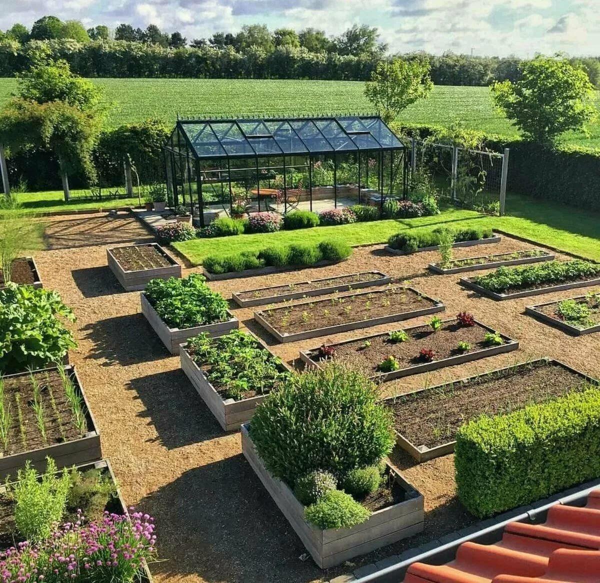 картинка красивого огорода люди абсолютно
