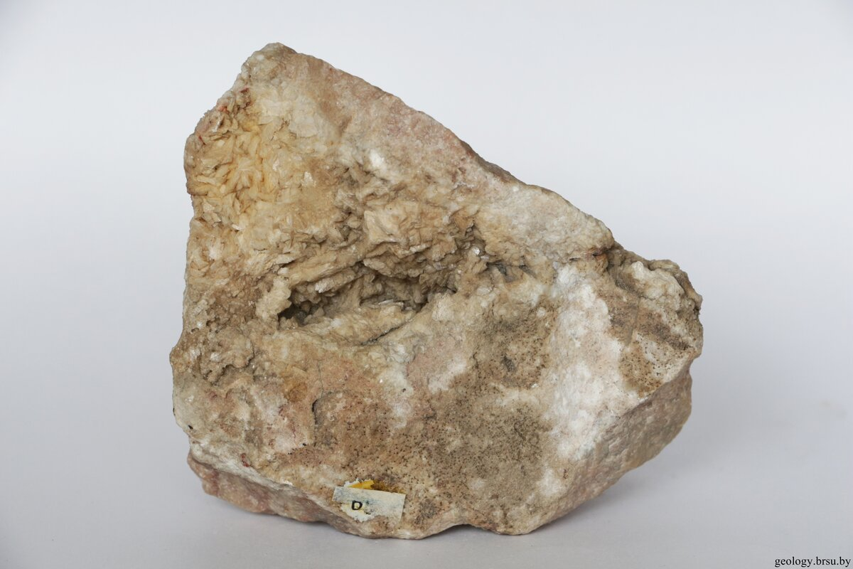 Известняк фото камня