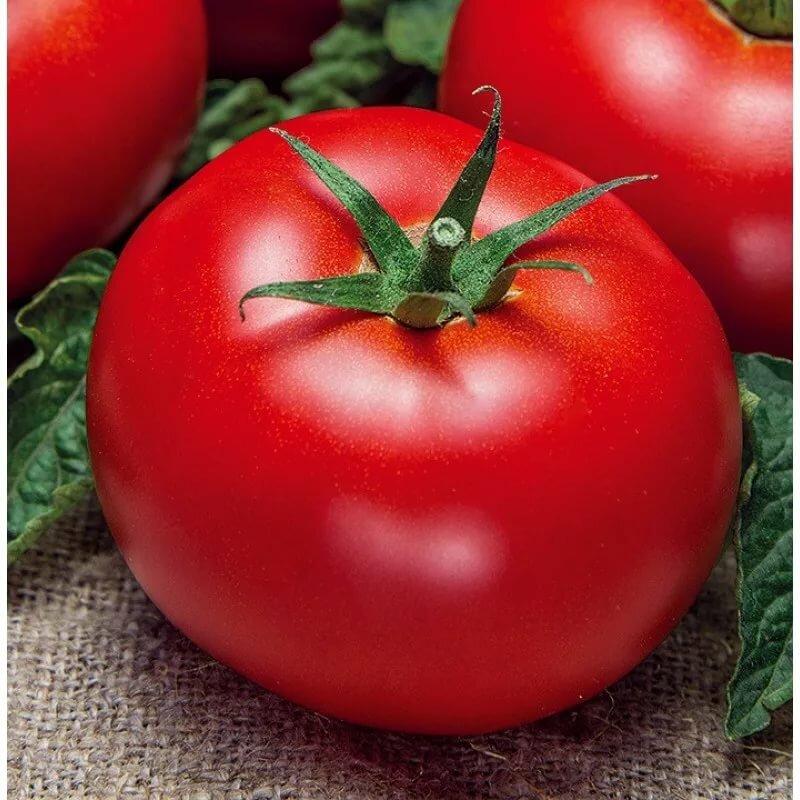 картинки сорта томатов это тяжелая