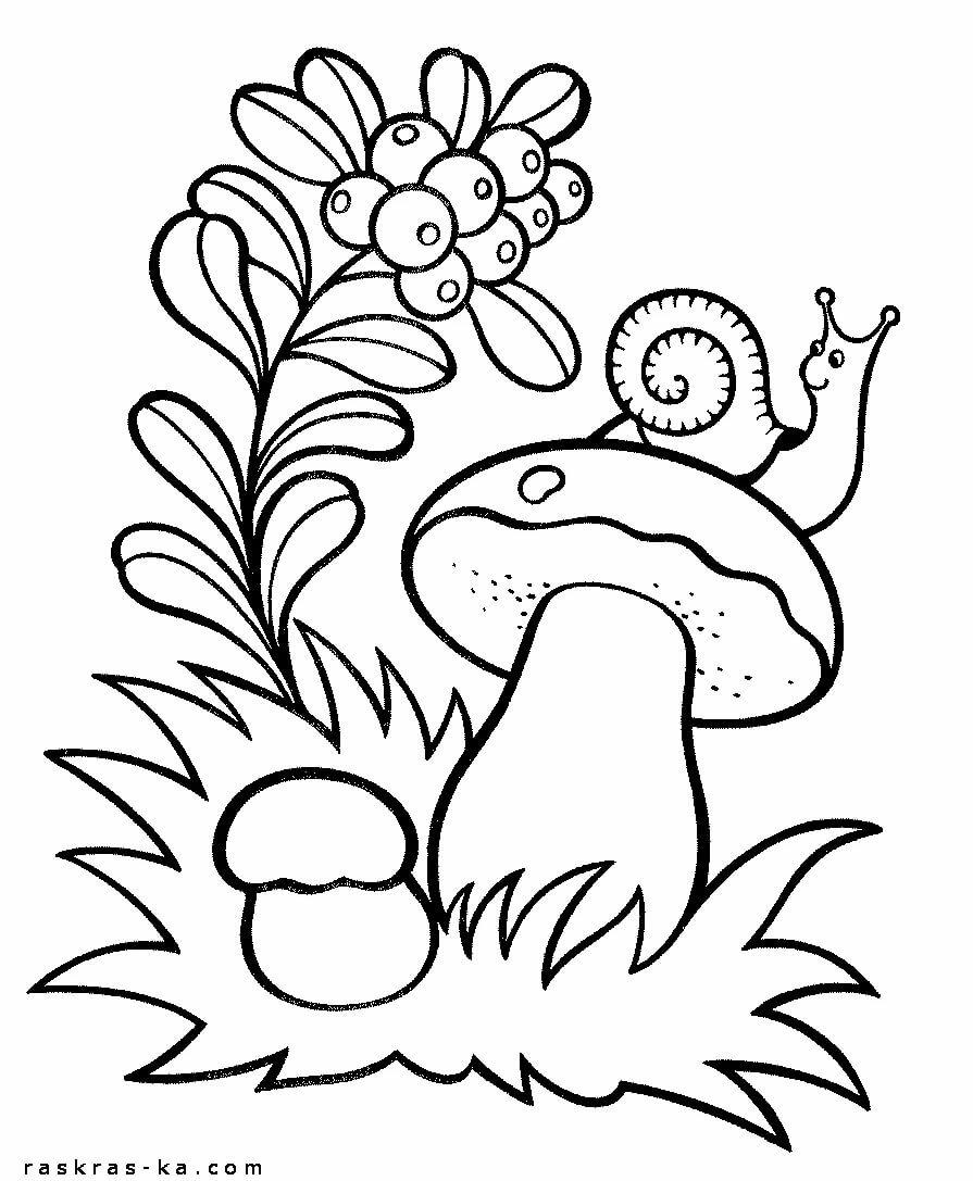 раскраска на тему лес грибы ягоды нейл-арте ежегодно появляются