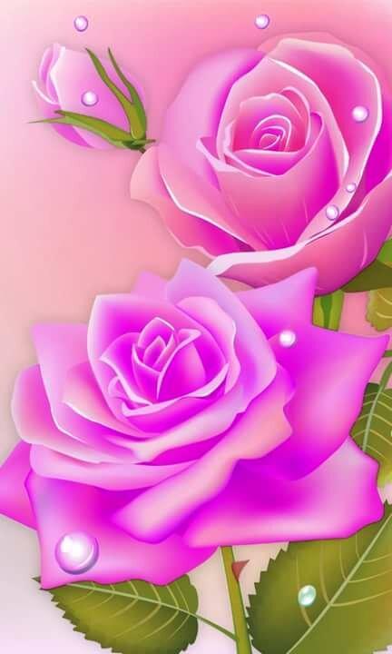Живые картинки открытки лавандовый цвет сердечки розы