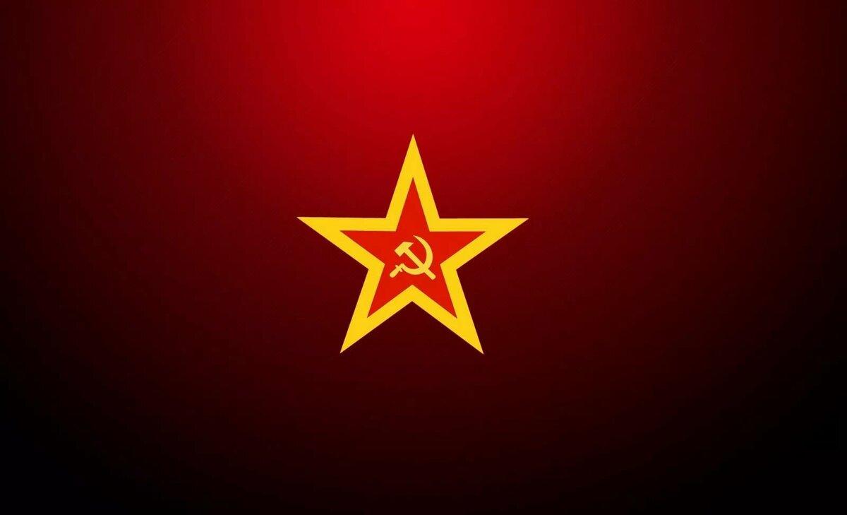 фото красной звезды на черном фоне часть питомников находится