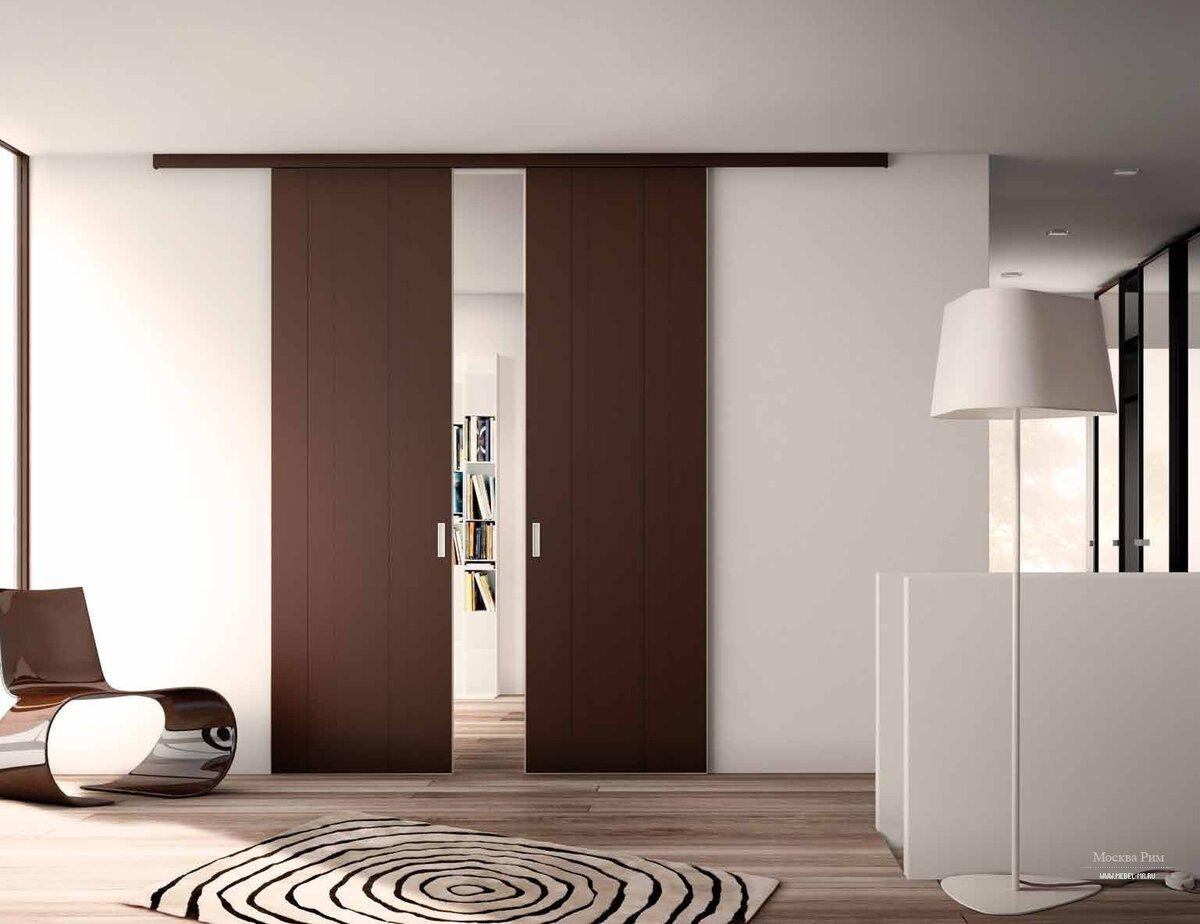 дизайн раздвижных дверей фото дочь