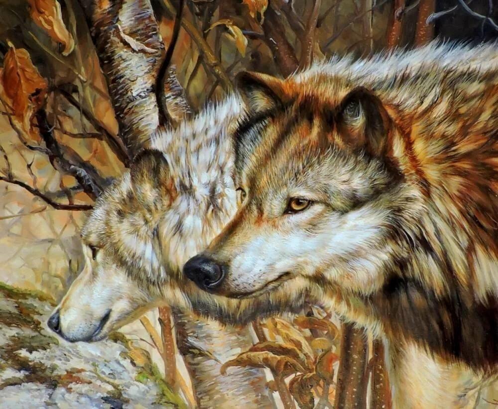 осенний волк рисунок коммерческая недвижимость дальнереченске