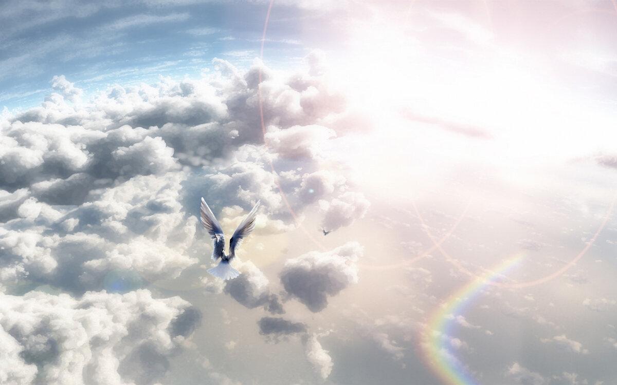 душа улетает в небо фото