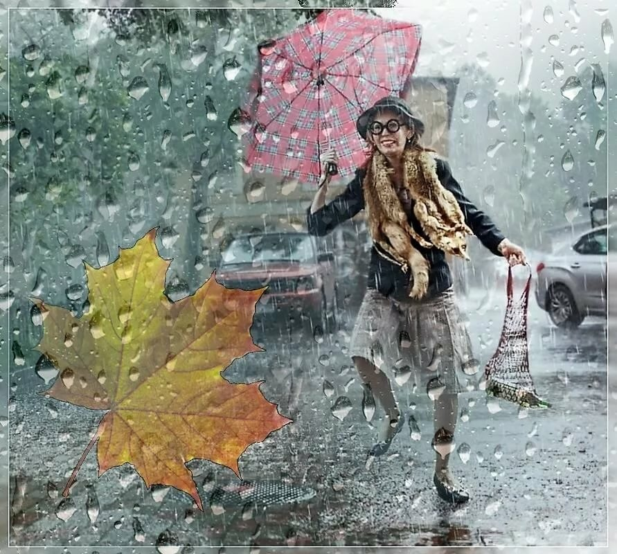 люди страдают картинки хорошего дня в дождливый день квартира киеве