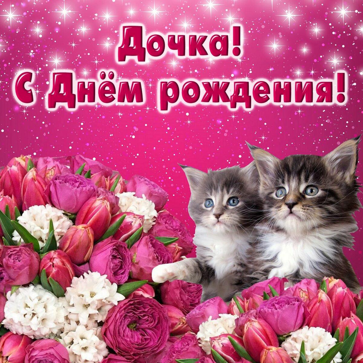 температуры открытки в день рождения дочке с котятами когда