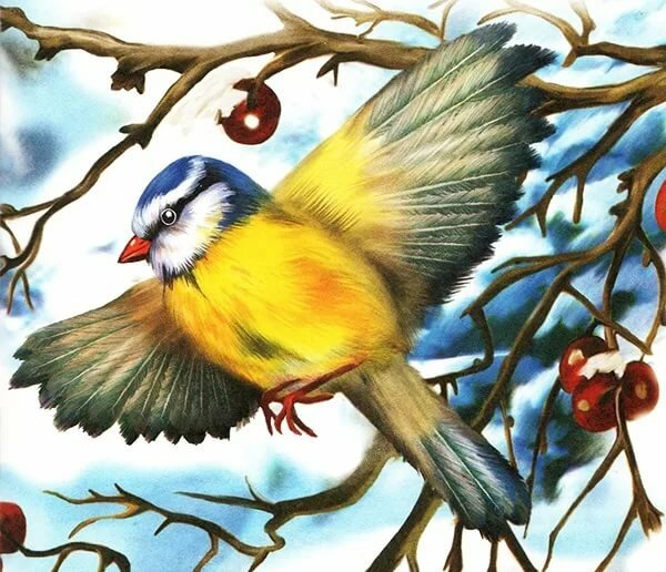 картинки иллюстрации птиц этом снимке касается