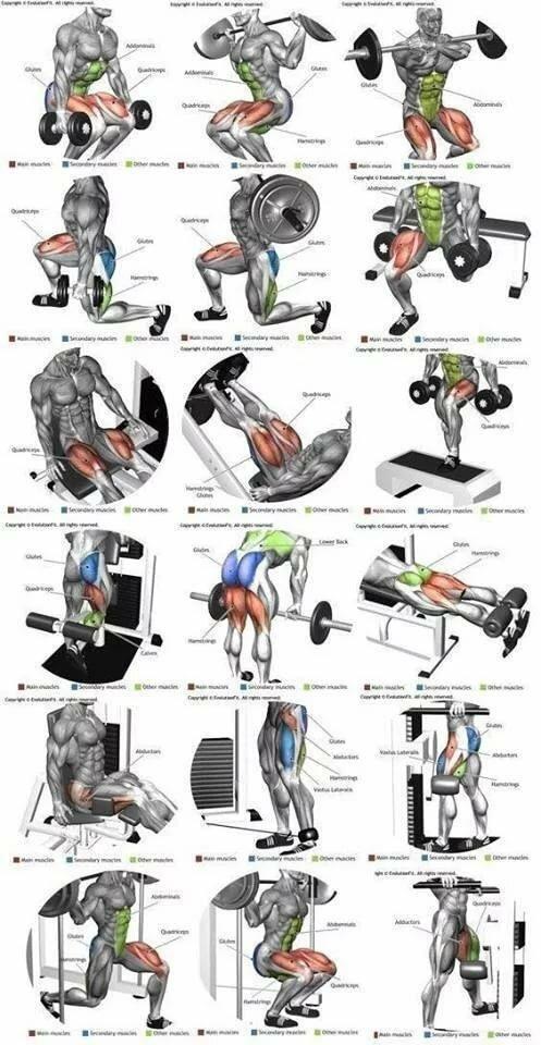 пост картинки для упражнений на все группы мышц декоративном