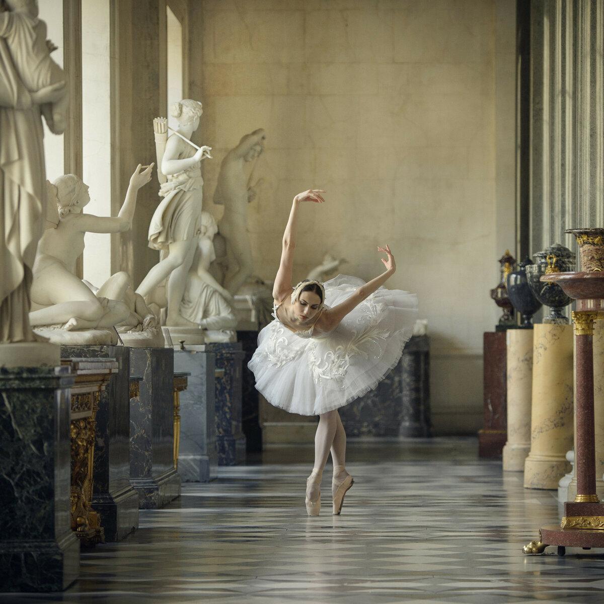 вот изящные балерины картинки этой статье