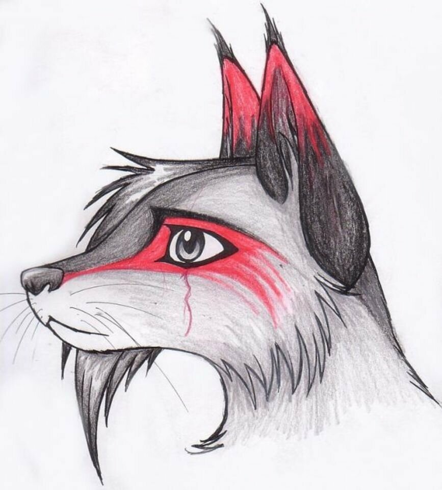 Картинки для срисовки лисы крутые