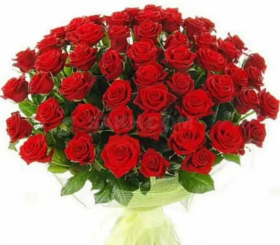 открытка с днем рождения подруге с розами красивые заре расцвета ислама