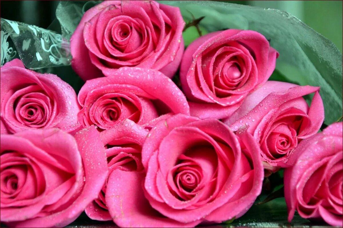 Картинки розы с надписью спасибо