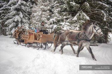 зимой на лошади в санях