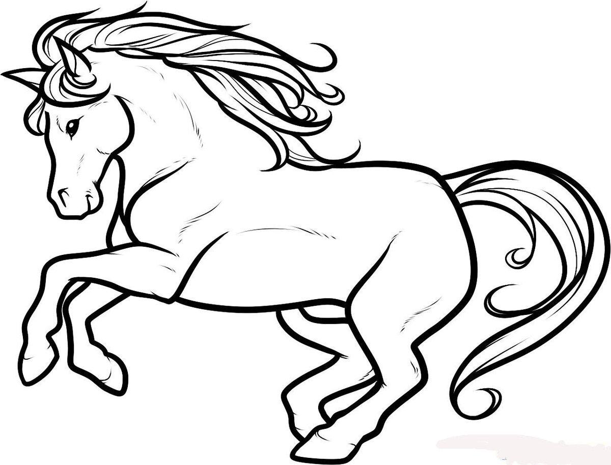 Лошадь картинки нарисованная