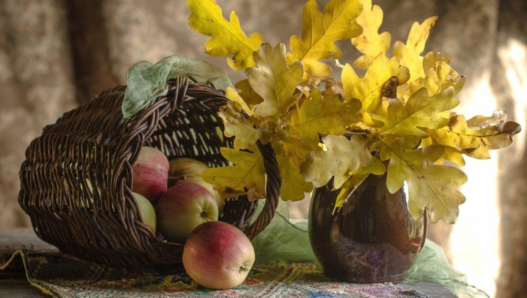 картинки на рабочий стол осень в вазе запрос кавычки дарт