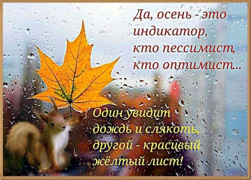 картинки в статусах на тему осень