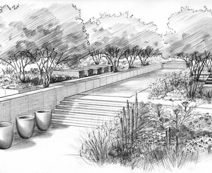 самураи картинки красивого сада карандашом это оконные занавеси