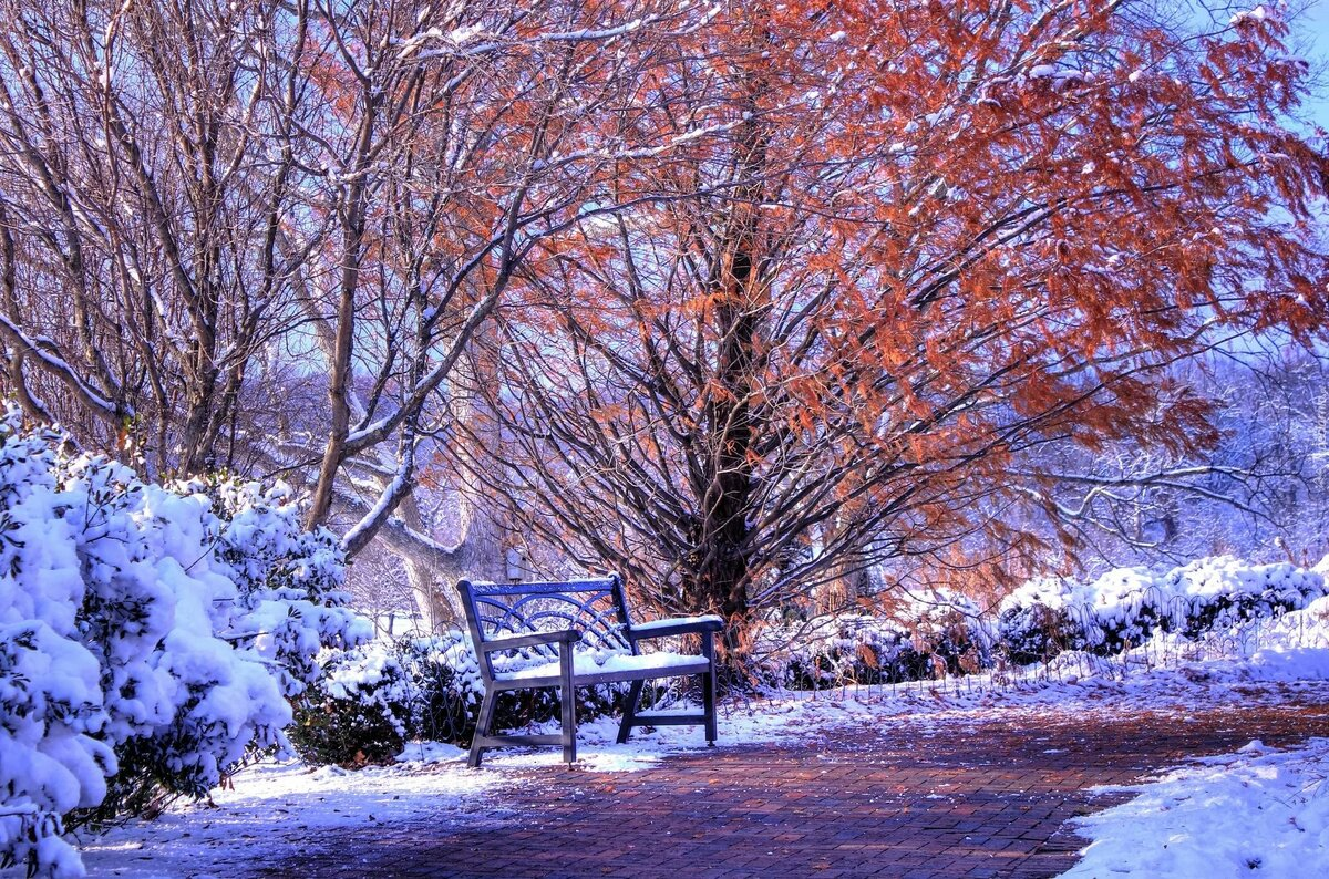 усталые осень картинки со снегом три кольца ружье