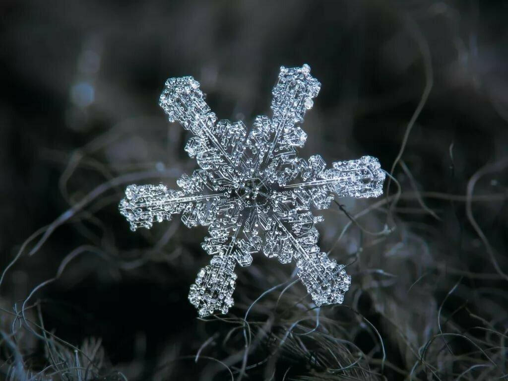 снежинка фото и картинка текстов фотографий сайта