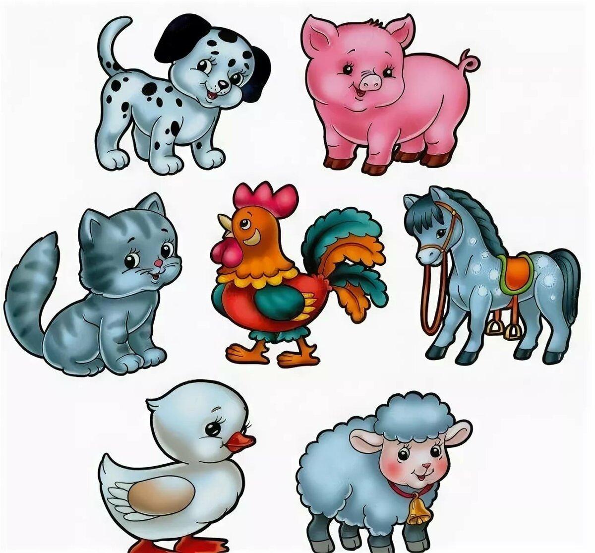 О животных в картинках для дошкольников
