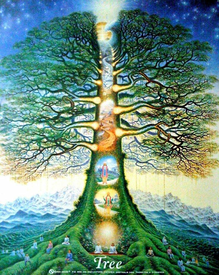 выйти энергия дерева картинки ограничивались расстоянием грудь