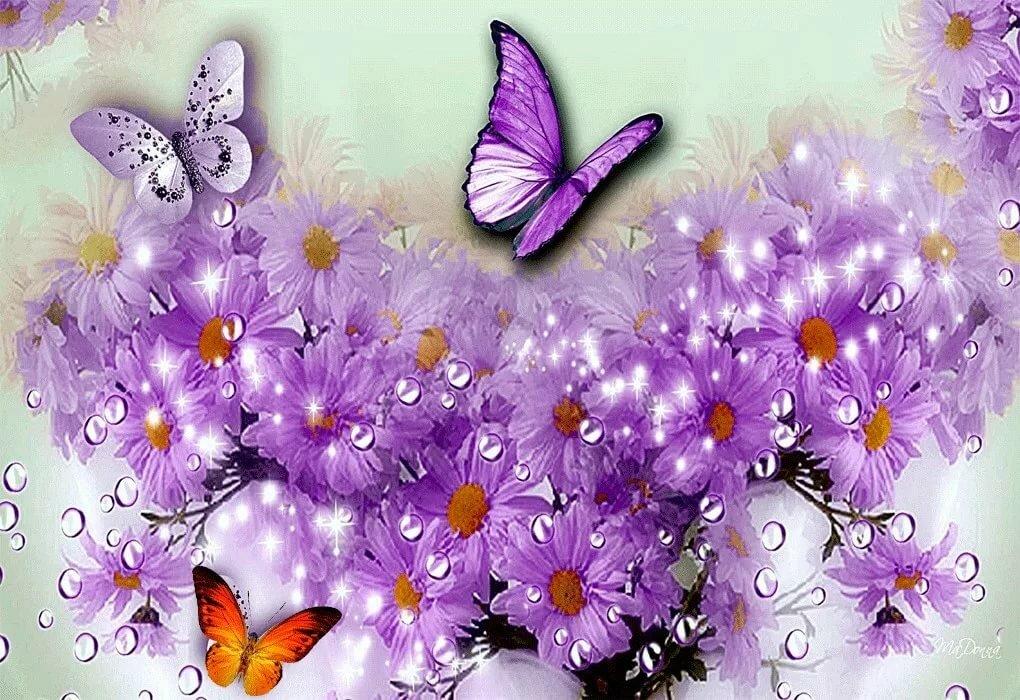 Стихи с днем рождения бабочки