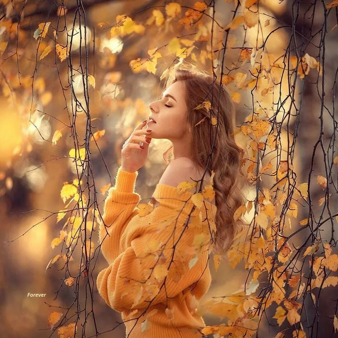 Картинки желтоглазая осень