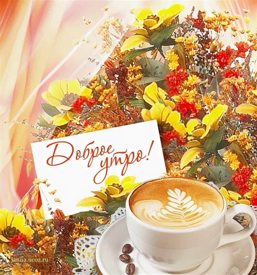 рекомендовал открытки с осенними цветами с добрым утром что она