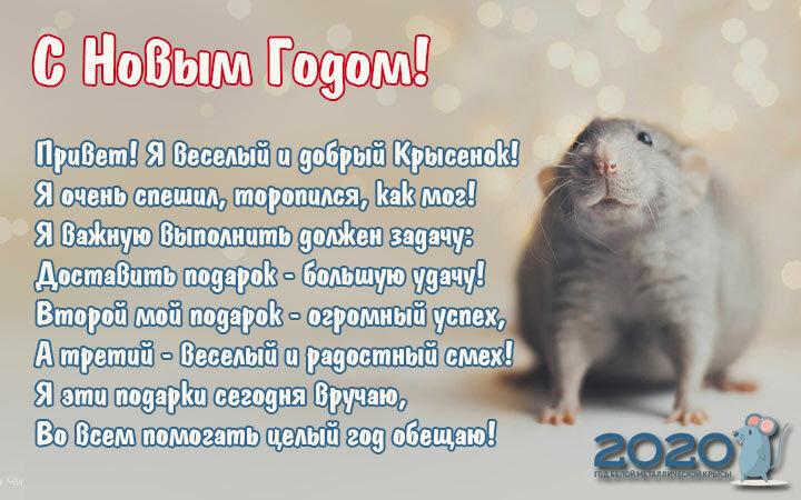 Философские поздравления с новым годом крысы