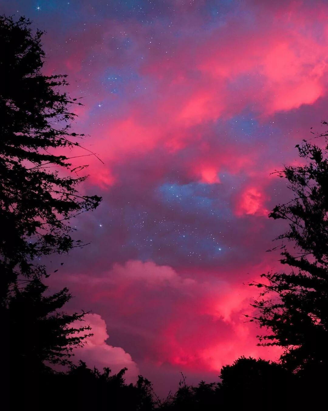 Розовая ночь картинки
