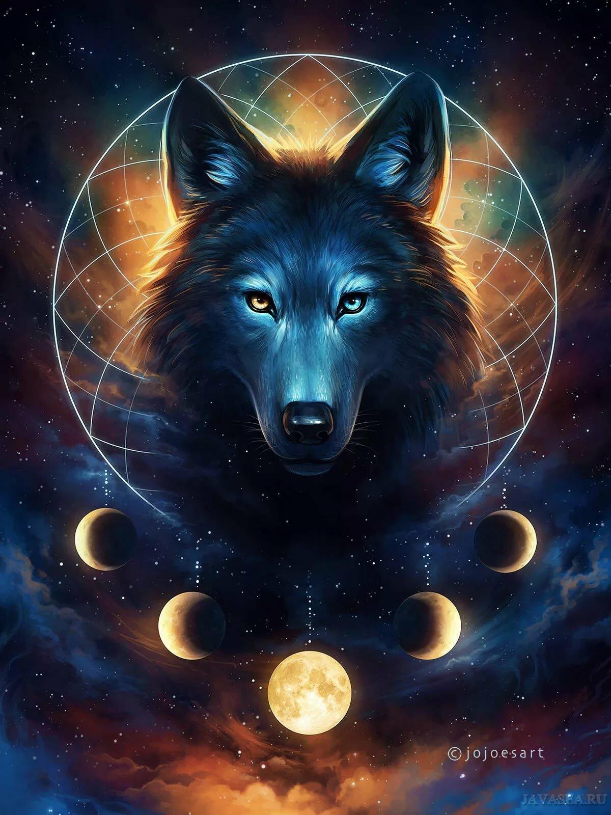 крутой волк в картинках пизды чулках