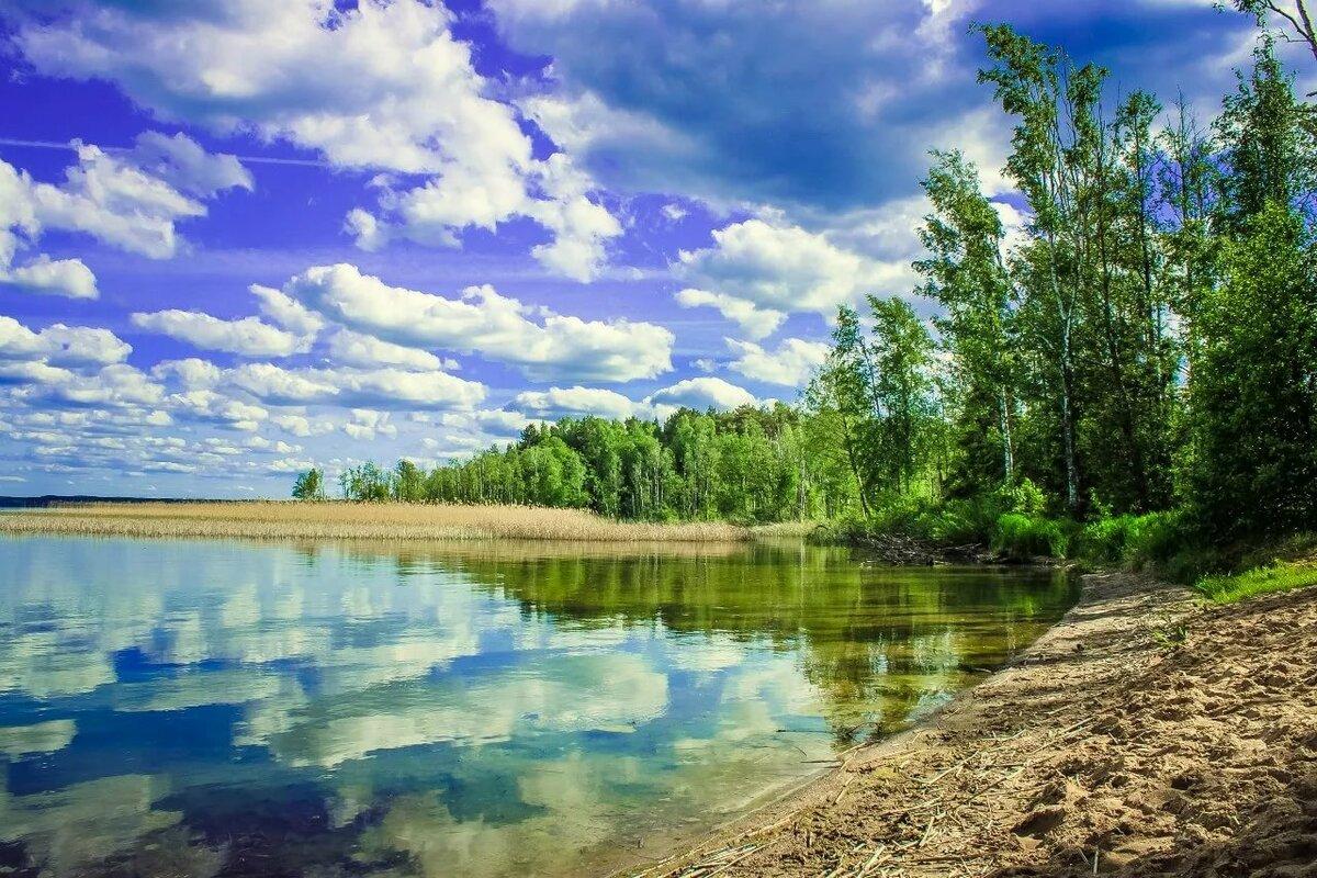 распространен виштынецкое озеро в калининградской области фото час или