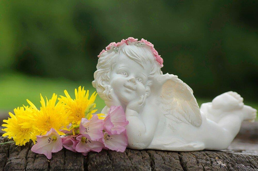 Фото красивого ангела счастья