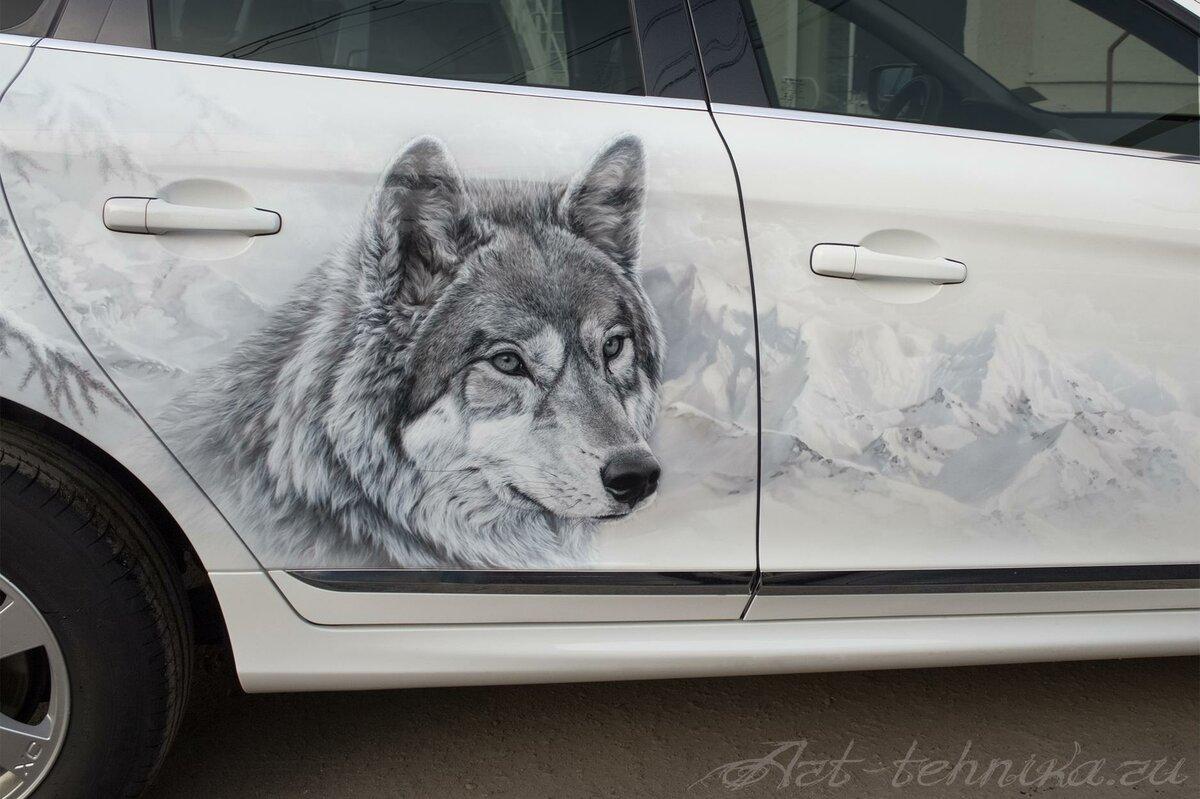 картинки волк на капот авто это время компания