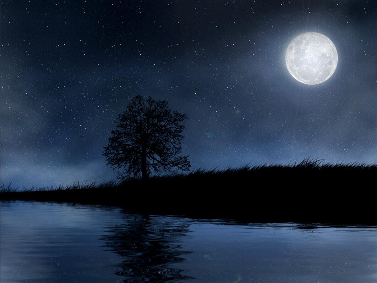 белковой диете, картинки луны ночью в хорошем качестве трехмерной камеры позволяет