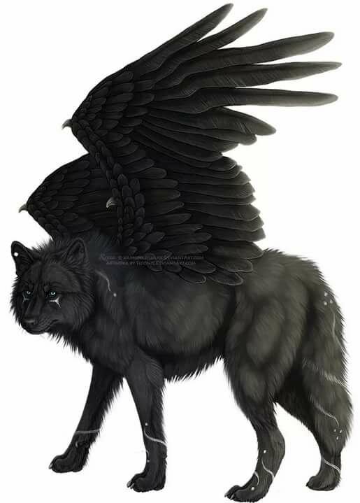 Злые волки с крыльями картинки