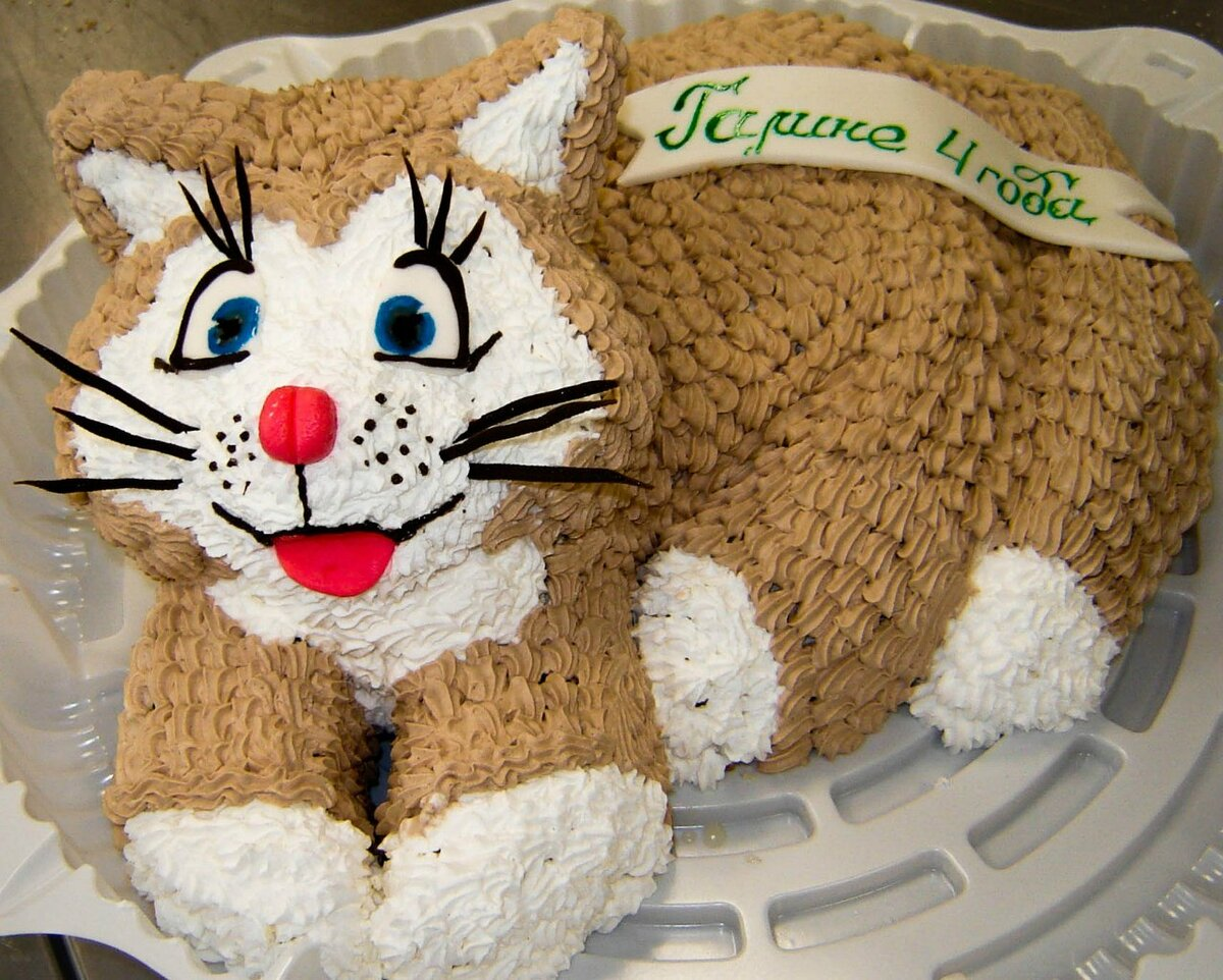 фото торта в виде кошки