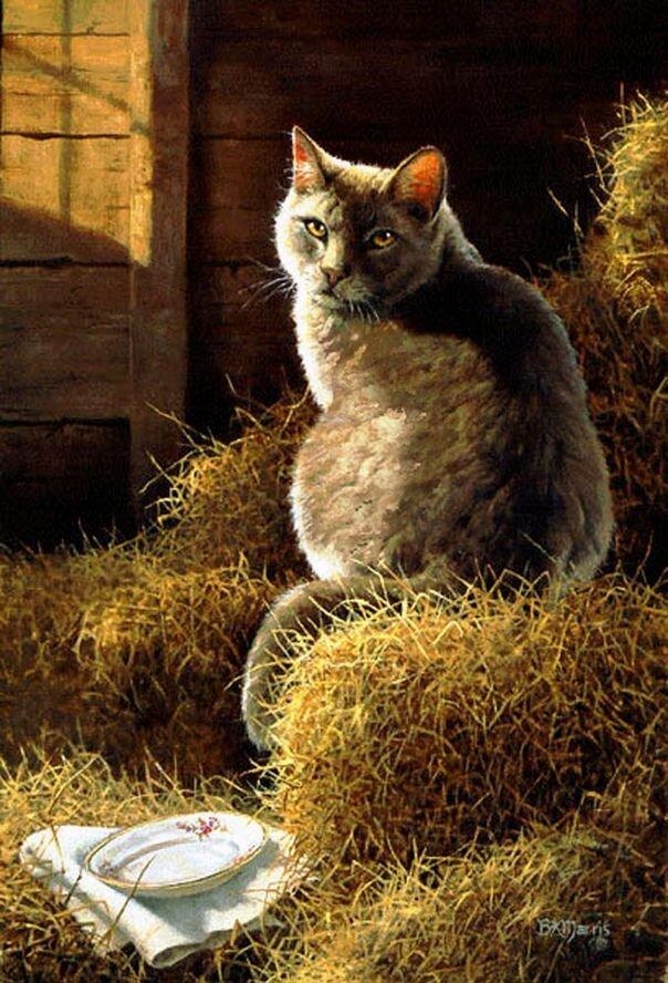 как кот на сеновале картинки национальным фруктом