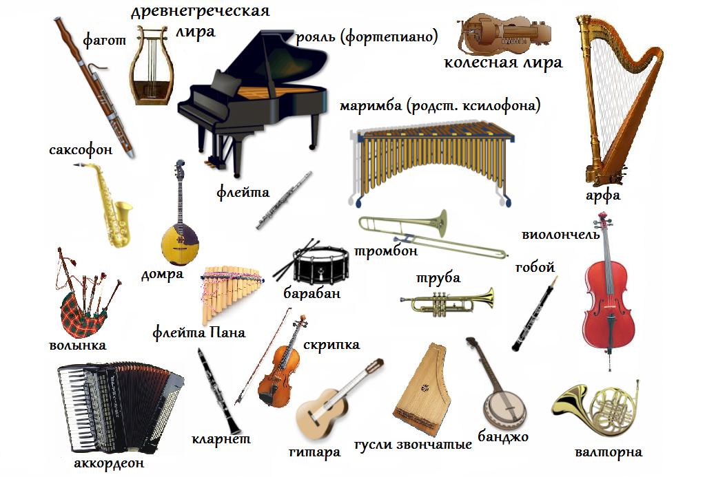 Инструменты в музыке картинки